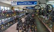 International Bicycle Dealer and Supplier